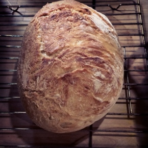The No Knead Bread Saga: Part 4 – Catharsis